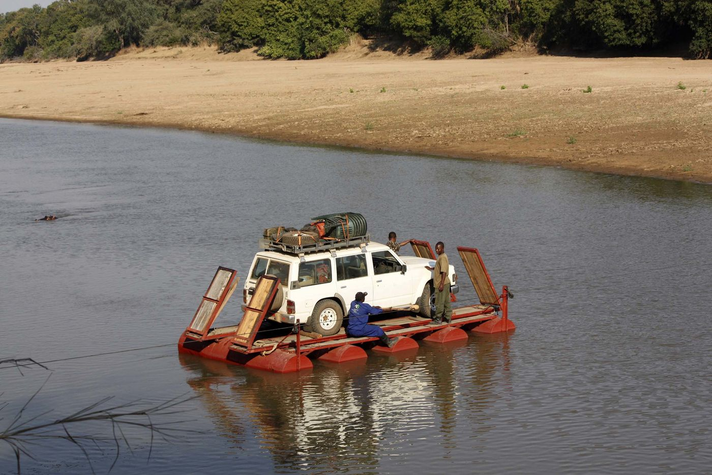 Three men and an SUV cross a river on a pontoon. The shore and trees are visible in the background, and a hippo's eyes are visible peeking out of the water.