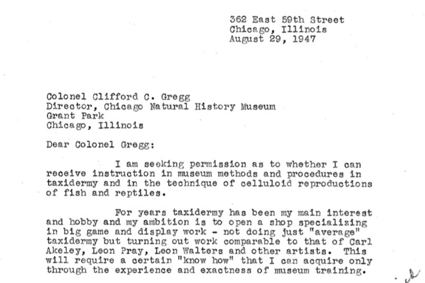 A typewritten letter, in which Cotton inquires about the availability of taxidermy training at the museum.