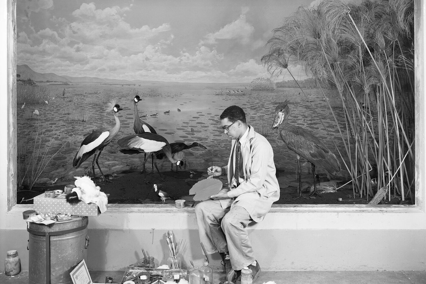 Carl Cotton, wearing a lab coat, sits in front of a diorama with birds. He holds an artist's palette, and a variety of paint, brushes, and other supplies are spread out on the floor in front of him.