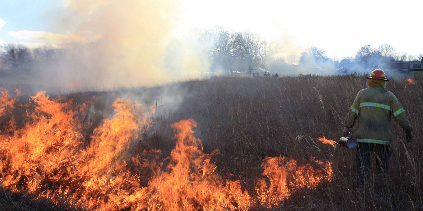 A firefighter spreading controlled fire in a prairie with tall grass