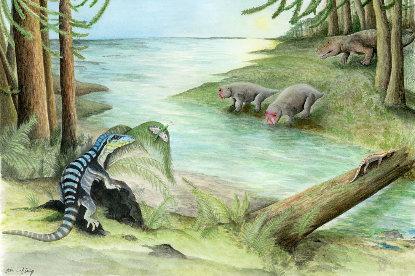 Illustration of a forest scene, with prehistoric animals on either side of a creek. In the foreground, a black and blue striped lizard-like animal perches on a rock as it appears to hunt a winged insect. A smaller lizard crosses a log over the creek. On the other side, two flat-faced, pig-sized animals approach the water's edge, and a dinosaur creeps in the background.