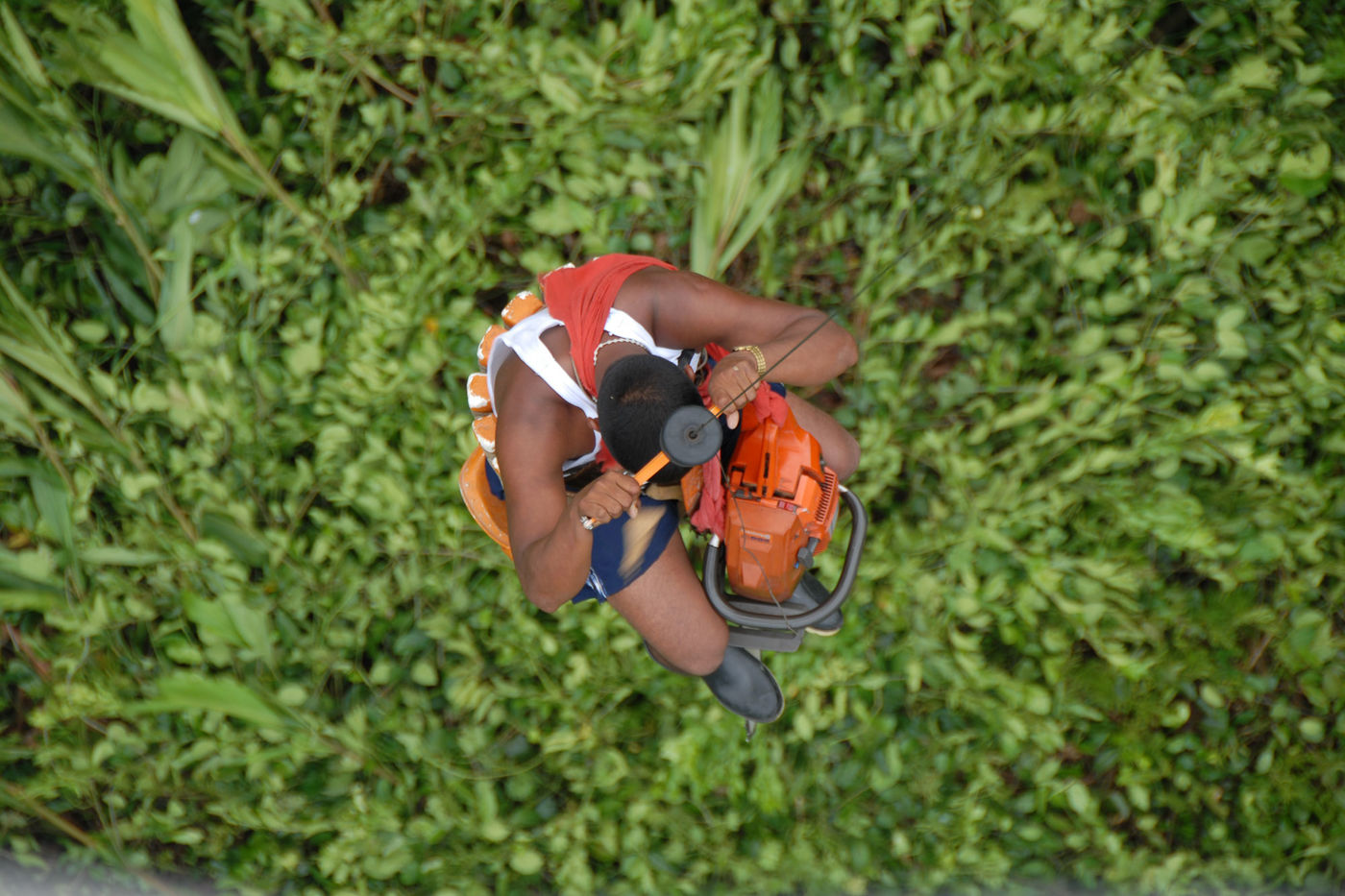 A man descends from a helicopter, lowered on a line into a dense green forest below.