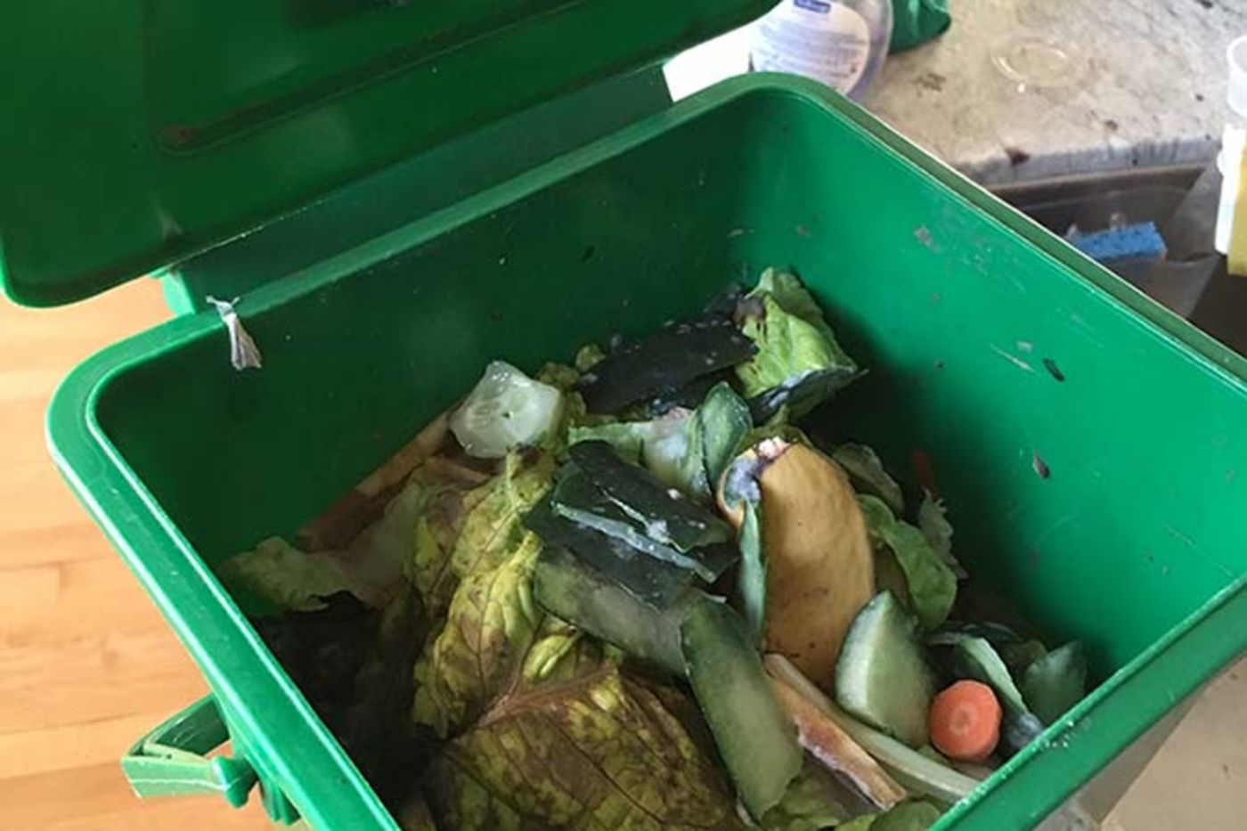 A square green bin filled with vegetable scraps