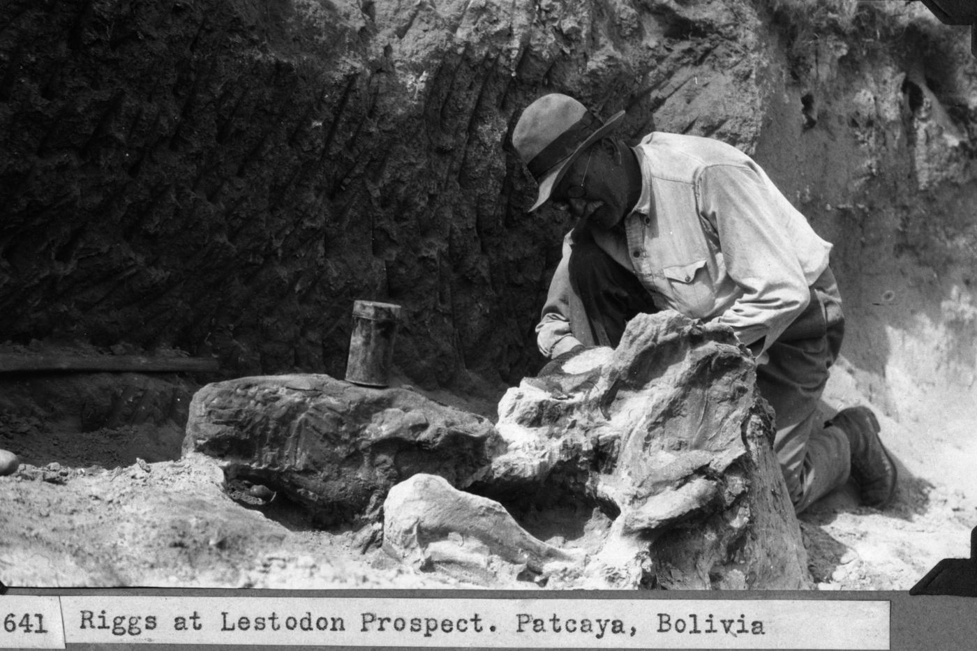 "Black-and-white photo of a man wearing a hat and glasses leaning over a large bone in a quarry. The typewritten description reads, ""Riggs at Lestodon Prospect. Patcaya, Bolivia."""