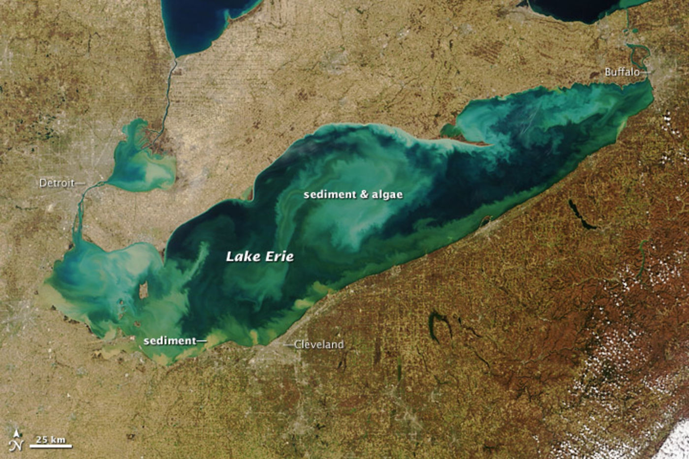 Satellite image of a marble green and blue body of water surrounded by brown land