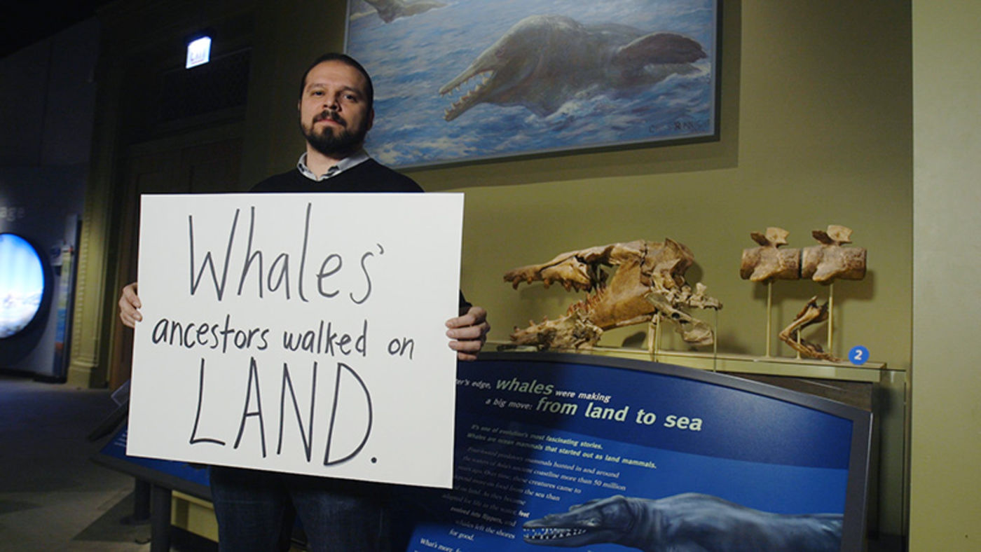 Man holding handwritten sign, standing in front of a museum display with a large animal skull and a painting of a whale-like animal with large teeth