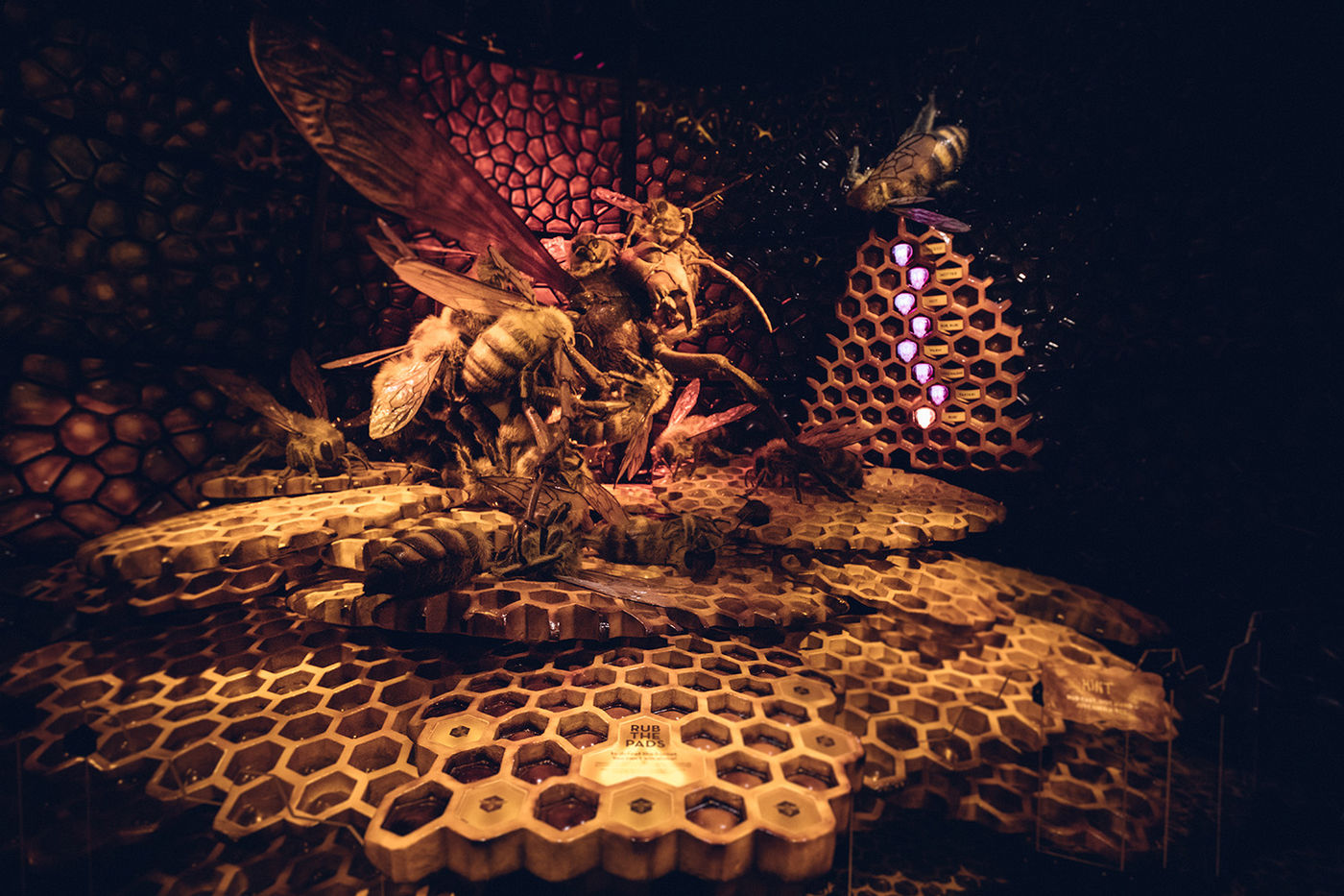 Oversized models of honeybees huddle together in the center of a honeycombed structure. The background lighting is pink.