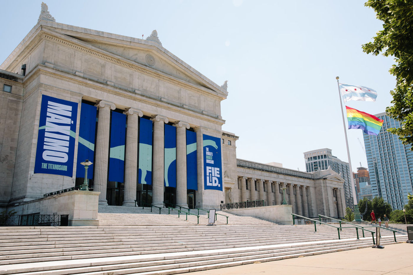 View of the north facade of the Field Museum with wide stairs leading up to the building entrance. The building is white marble and features a columned entrance and triangular pediment. Large banners advertising Maximo the Titanosaur hang across the facade.