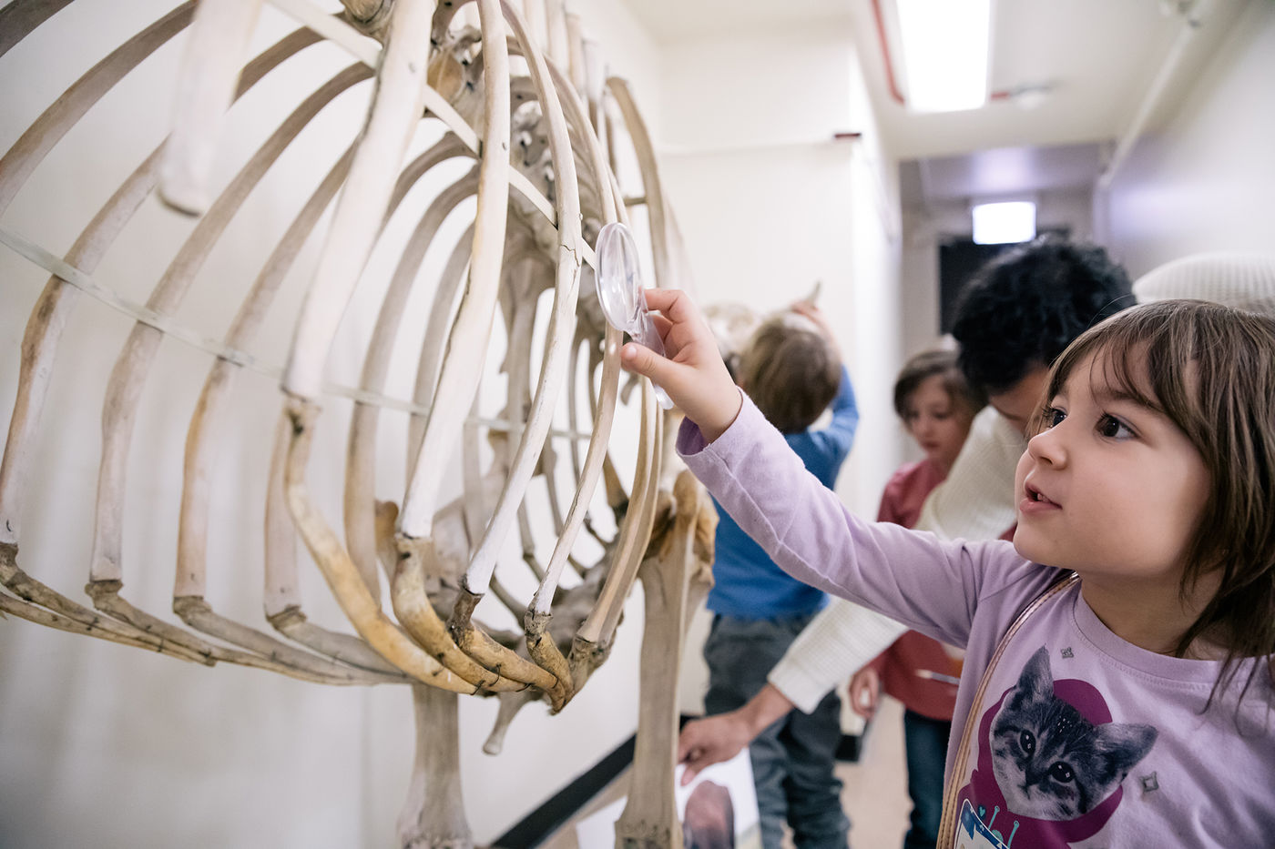 A young girl reaches out to touch a mounted skeleton. Other kids in the background also gather around the skeleton.