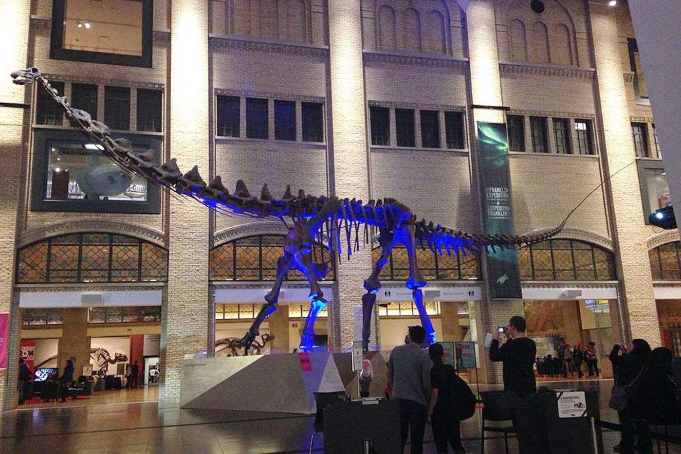 A dinosaur skeleton with long neck and tail in the middle of a large hall. It's dimly lit and there's a blue light on the dinosaur. People are looking at it and taking photos.