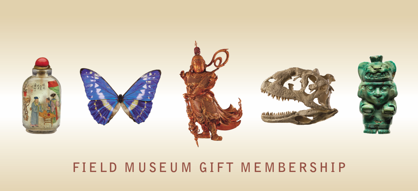 """Grouping of a range of Field Museum collection items with """"Field Museum Gift Membership"""" text underneath."""