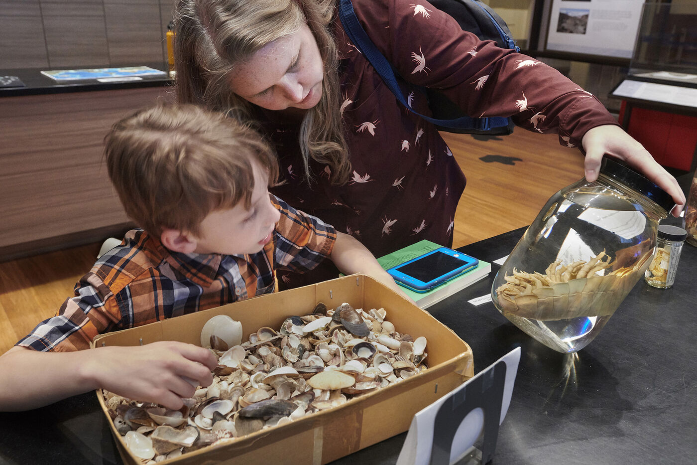 A child and their guardian look examine specimens arranged on a table. The guardian holds a glass jar at an angle for the child to see. The child is picking throw a box of sea shells.