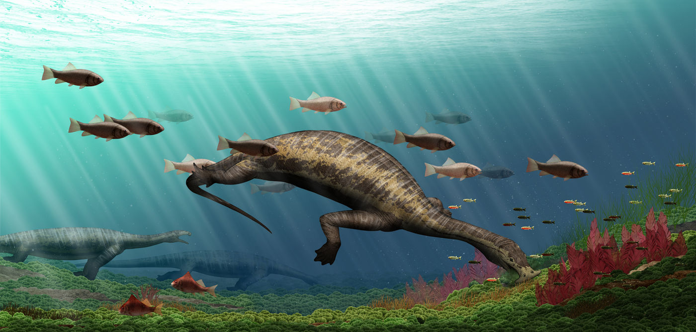 An artistic rendering of an under water scene, featuring the crocodile-sized sea-dwelling reptile, Atopodentatus unicus, swimming with prehistoric fish.