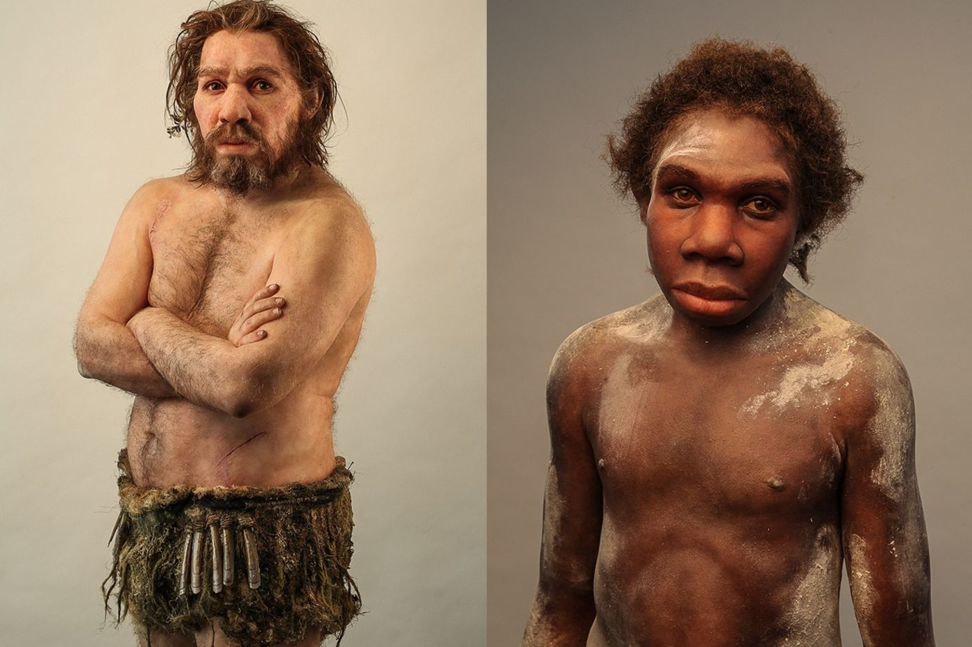 Two sculptures, created by French paleoartist Elisabeth Daynès, give a breathtakingly lifelike look at human relatives—Homo ergaster and Homo neanderthalensis.