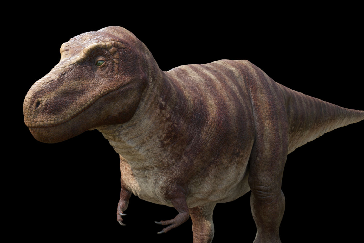 A 3D animation of a living Tyrannosaurus rex, standing in a forested landscape. The dinosaur appears to be walking slowing toward you, with mouth slightly open and bright green eyes fixed straight ahead.