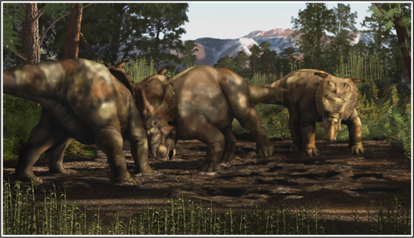 Illustration of three large triceratops-like dinosaurs with exaggerated noses and horns