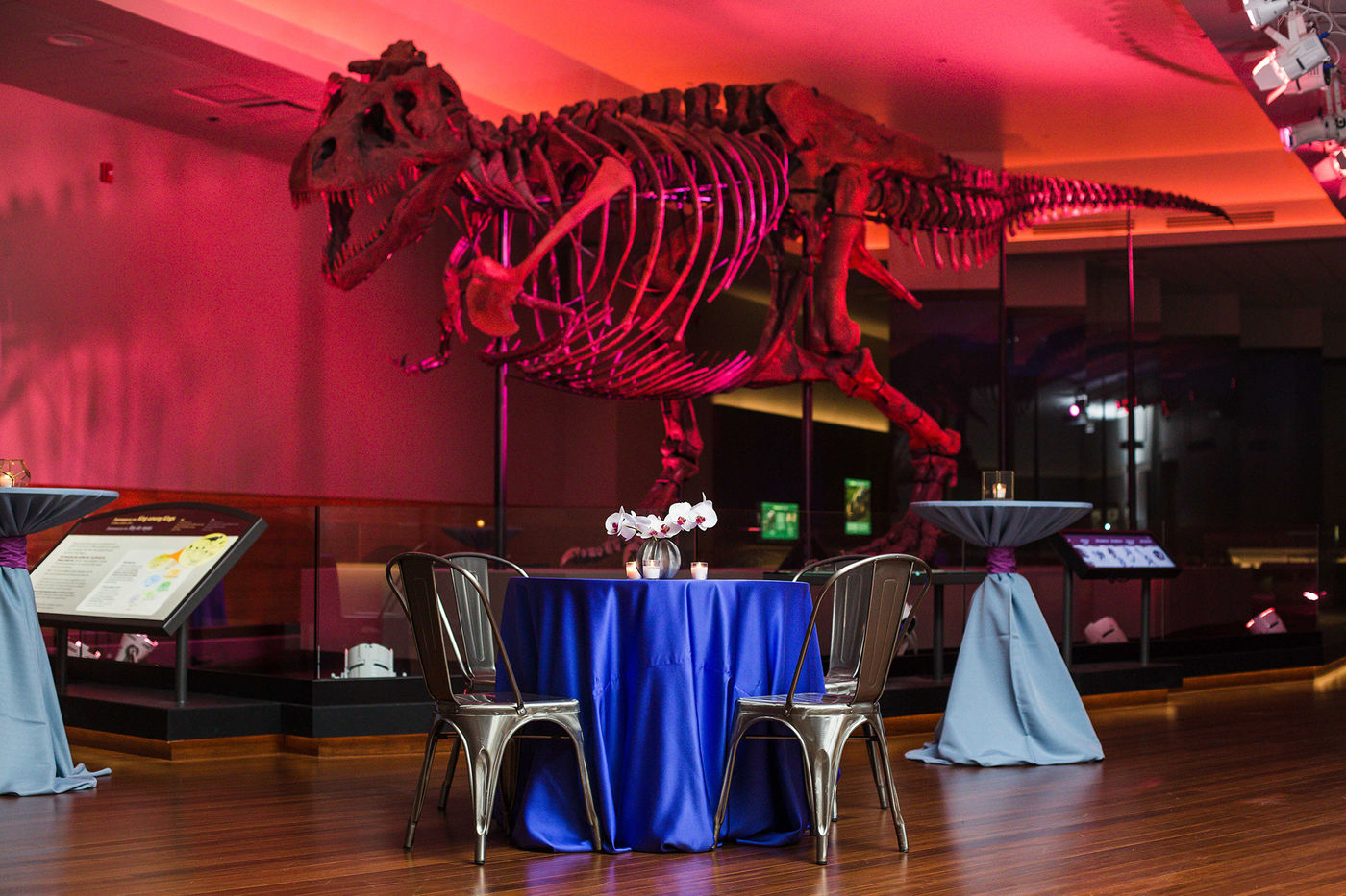 A table is set for two in SUE's gallery. The table features two chairs, a blue table cloth, and floral center piece. SUE's fossil, illuminated by red lights overhead, is visible in the background.