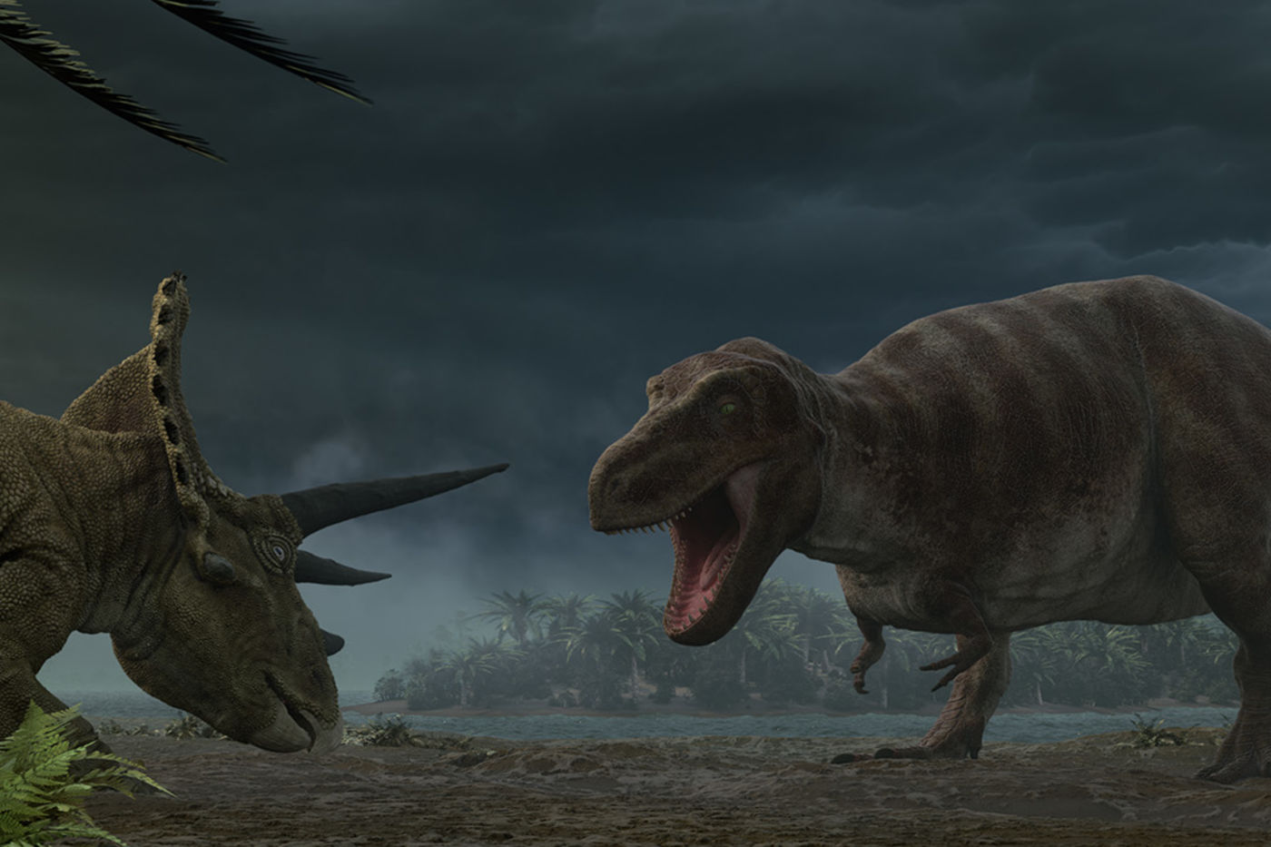 An animated image of a T. rex facing off against a triceratops on a river bed.