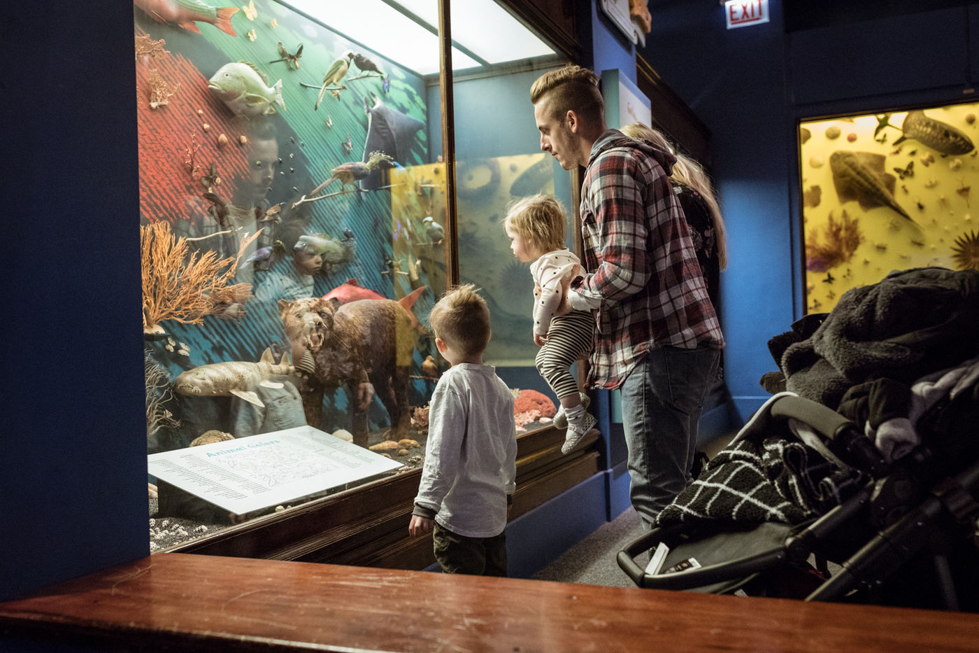 Two young visitors and their caretakers take a closer look at a diorama.