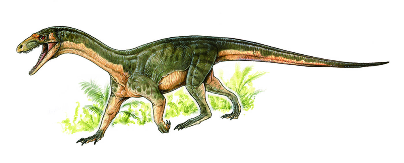 Illustration of a large lizard-like animal that's green and brown