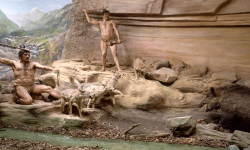 In a now de-installed diorama, two cavemen standing on rocks point spears at a wild boar. One man holds three dogs on leashes. A fourth dog stands near the other man.