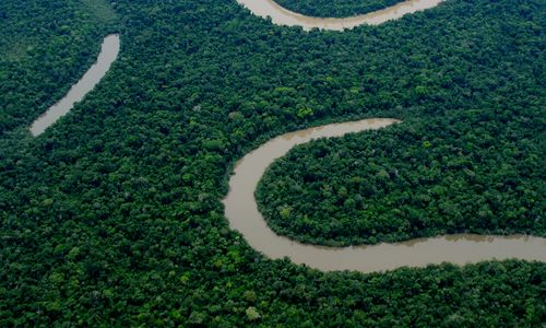 Aerial view of Peruvian rainforest, with a river winding through the trees.
