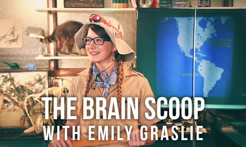 "Text reading ""The Brain Scoop with Emily Graslie"" is shown on top of a photo of Emily Graslie wearing explorer-style gear."