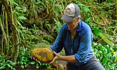 Woman wearing a baseball cap and blue shirt in a rainforest-like setting, holding a large rock