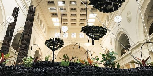 In the foreground, an eye-level view of a black plastic structure holding plants. The background includes the museum's Stanley Field Hall, with two totem poles to the left and three cloud-like black plastic structures suspended from the ceiling.