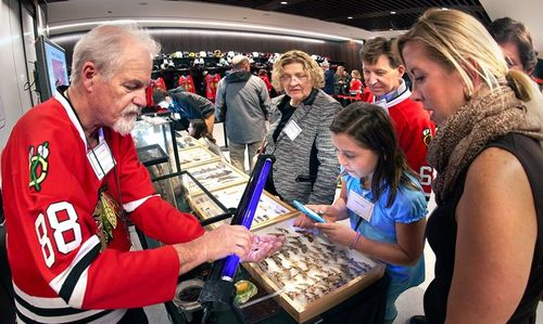 Staff member in a Chicago Blackhawks jersey showcases pinned insects to supporters during an event at the United Center.