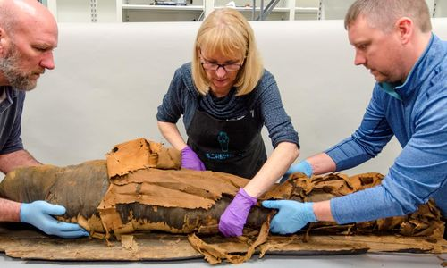 Three conservators carefully work to move an Egyptian mummy.