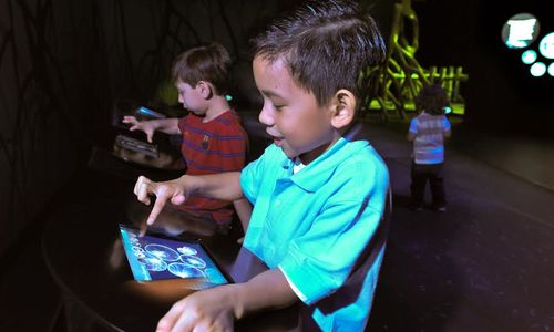 Two preschool-age boys use interactive touch screens in an exhibition.