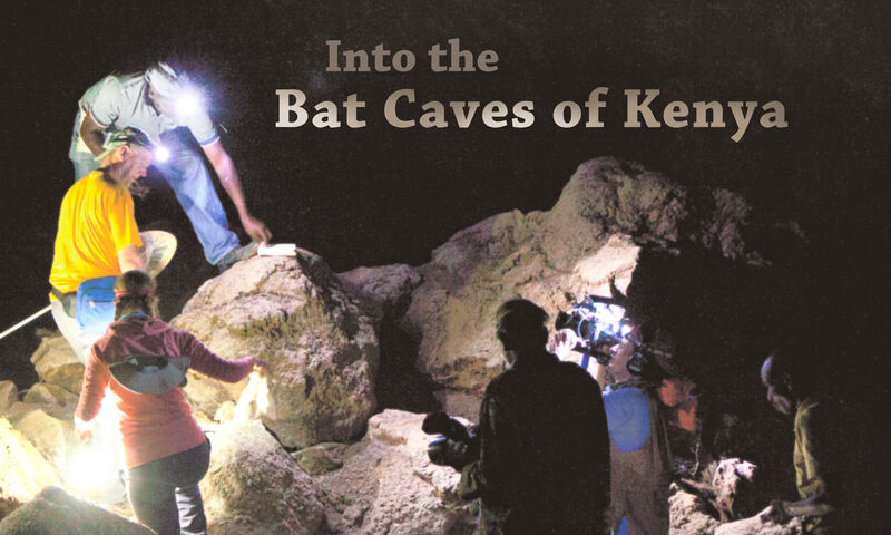 Into the Bat Caves of Kenya