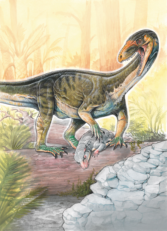 Illustration of a large lizard or dinosaur-like animal attacking a small possum-like mammal in a forest